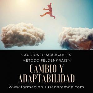 Cambio y Adaptabilidad