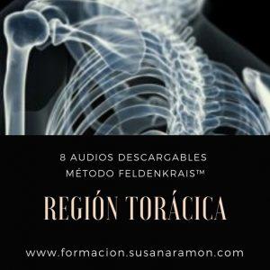 La Región Torácica